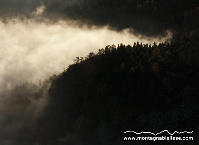 Alberi e nubi nella Valle Oropa